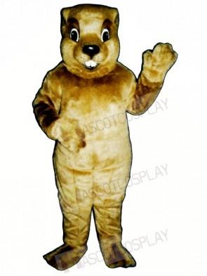 Groundhog Mascot Costumes