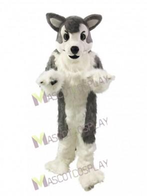 Gray Wolf Husky Dog Mascot Costume