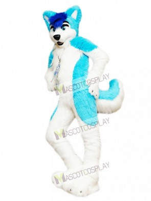 Husky Dog Adult Mascot Costume