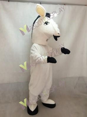 White Donkey Mascot Costume