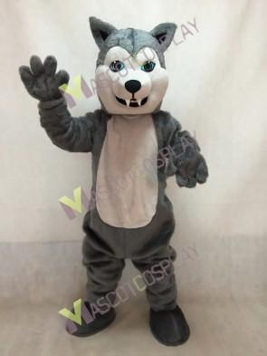 Grey Husky Dog Mascot Costume with Blue Eyes