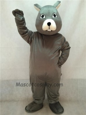 Gray Squirrel Mascot Costume