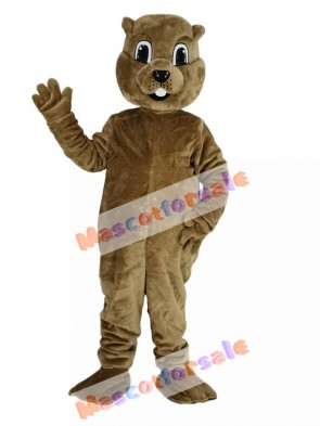 Brown Groundhog Mascot Costume Animal