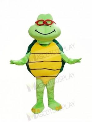 Cheap Green Turtle Custom Mascot Costumes