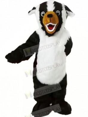White and Black Badger Mascot Costumes Cartoon