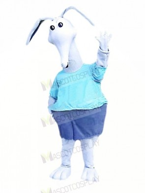 White Aardvark Mascot Costumes Cartoon