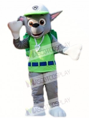 Paw Patrol Rocky Recycling Ecology Pup Mascot Costume