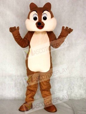 Squirrel Boy Mascot Funny Costumes Animal