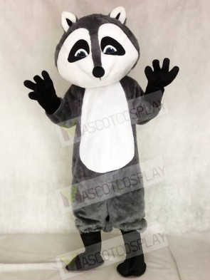 Raccoon Mascot Costumes Animal