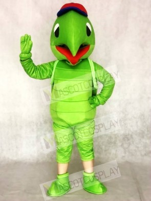 Green Tortoise Turtle Mascot Costumes Animal