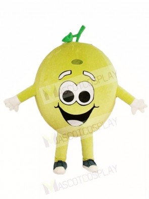 Happy Lemon Lime Mascot Costumes Fruit Plant
