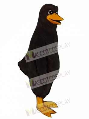 Cute Blackbird Mascot Costume