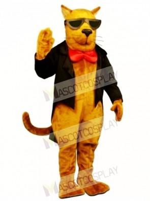 Cute Strayed Cat Mascot Costume