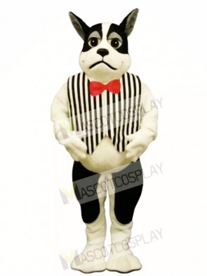 Cute Harrington Dog with Vest Mascot Costume