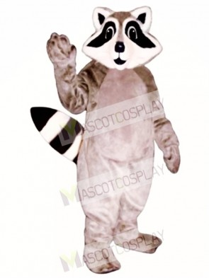 Little Raccoon Mascot Costume