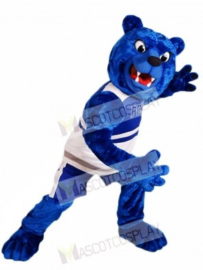 Royal Blue Bear Mascot Costumes