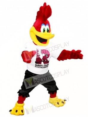 rot Roadrunner Maskottchen Kostüme Vogel