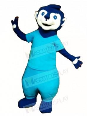 Blue Meerkat Animal