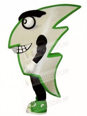 Flash Mascot Costumes