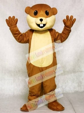 Benny Beaver Mascot Costumes Animal
