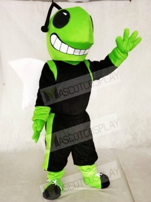 Green and Black Hornets Mascot Costumes Insect