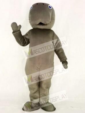Gray Manatee Mascot Costumes Animal