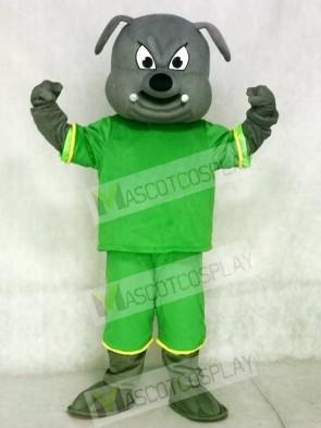Gray Bulldog Mascot Costumes Animal with Green Suit