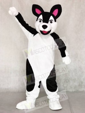 Black and White Husky Dog Mascot Costumes Animal