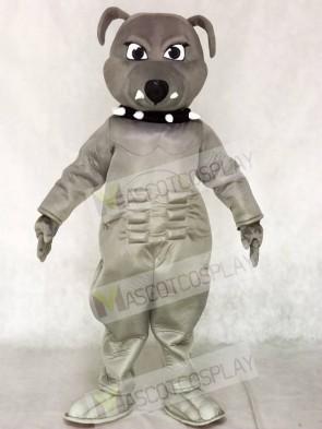 Grey Bulldog Mascot Costumes Animal