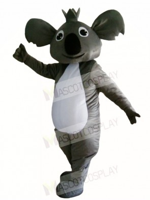 Koala Bear Mascot Costumes Animal