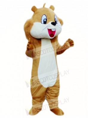 Brown Squirrel Mascot Costumes Animal