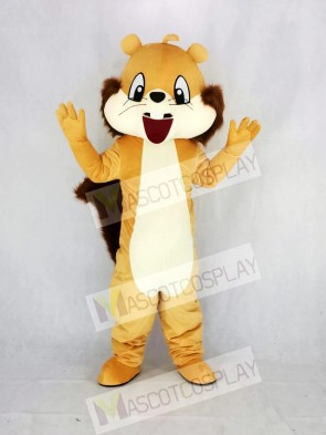 Cute Brown Squirrel Mascot Costume Cartoon
