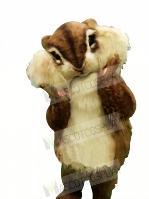 Best Quality Squirrel Mascot Costumes