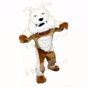 Greenstone Bulldog Mascot Costumes Adult