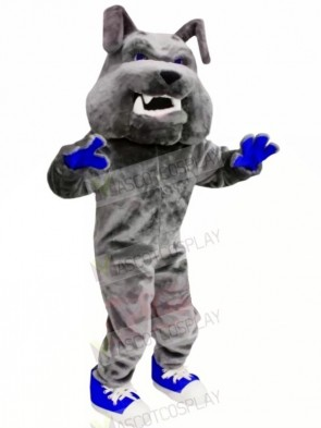 Grey Bulldog with Blue Shoes Mascot Costumes