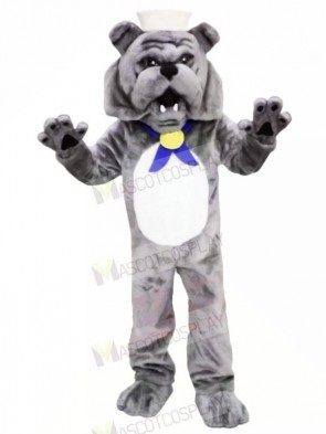 Grey Bulldog Mascot Costumes Adult