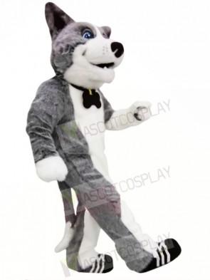 Cute Grey Dog Mascot Costumes