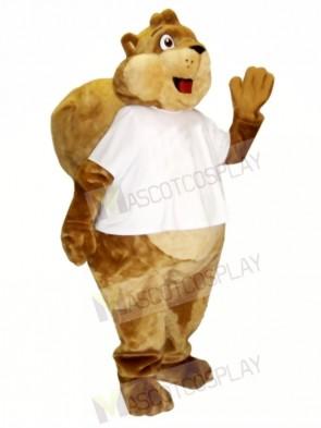 Cash Squirrel Mascot Costumes