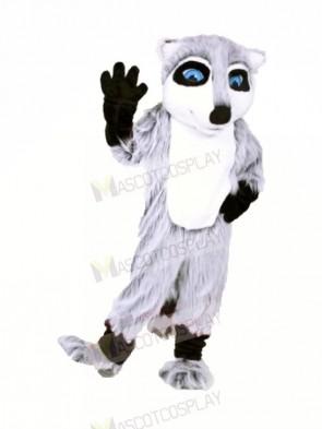 Quality Raccoon Mascot Costume Cartoon