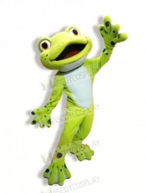 School Cute Frog Mascot Costumes Cartoon