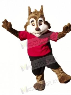 Cute Sport Squirrel Mascot Costumes