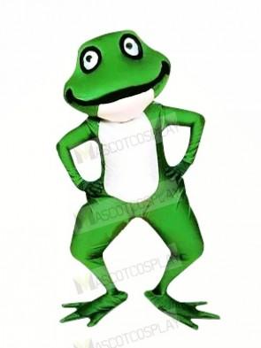 Realistic Green Frog Mascot Costumes Cartoon