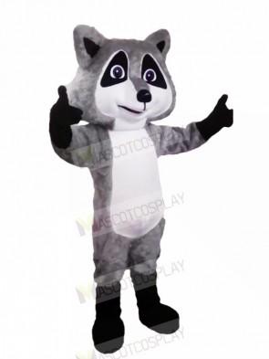 Cute Grey Raccoon Mascot Costumes Cartoon