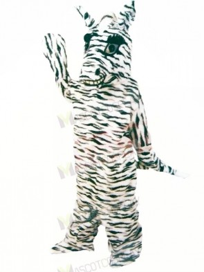 Friendly Zebra Mascot Costumes Cartoon