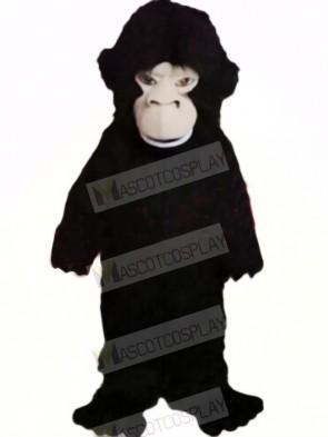Fierce Black Gorilla Mascot Costumes Cheap