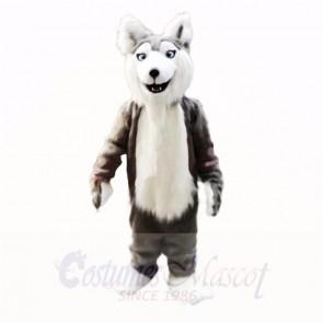 Gray Husky Dog Mascot Costumes Cartoon