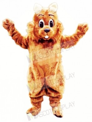 Top Quality Squirrel Mascot Costumes