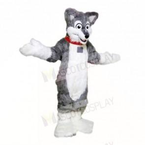 Grey Lightweight Husky Dog Mascot Costumes School