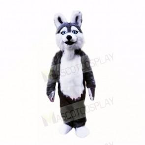 Smiling Grey Plush Husky Dog Mascot Costumes School