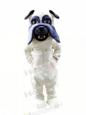 Lightweight White Bulldog Mascot Costumes